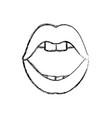 sexy woman lips vector image vector image