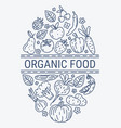 healthy organic eco vegetarian food design vector image