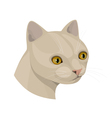 cat with yellow eyes and pink nose vector image