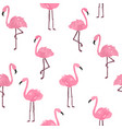 cute flamingo background vector image vector image