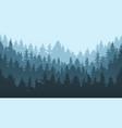 pine forest landscape evergreen spruce tree park vector image