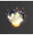 Realistic explosion symbol vector image vector image