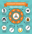 blacksmith infographic concept flat style vector image vector image