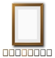 Brown Frames vector image