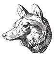fox head was designed by habenschaden of munchen vector image vector image
