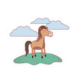 horse cartoon in outdoor scene with clouds on vector image vector image