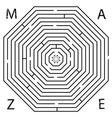 octagon maze vector image vector image