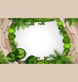 an aerial garden vector image vector image