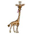 cartoon image of giraffe vector image vector image