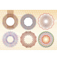 elements for currency certificate or diplomas vector image