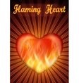 Flaming Valentine Heart vector image