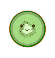 flat icon kiwi vector image