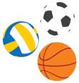 Football basketball and volleyball vector image vector image