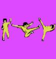 kung fu master vector image