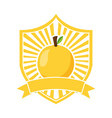 orange fresh healthy food emblem vector image vector image