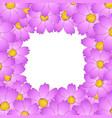pink cosmos flower border2 vector image vector image