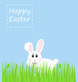 easter rabbit rabbit looks with grass vector image