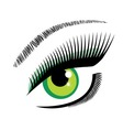 eye green vector image vector image