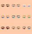 Female eyes and brows icons set vector image