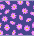pink cosmos flower on purple background vector image vector image