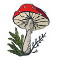 unhealthy hand-drawn colorful poisonous mushroom vector image