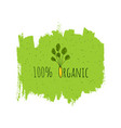 organic eco fresh vegan green design template vector image