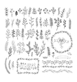 Floral vintage hand drawn collection vector image