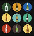 Alcohol drinks bottles icon set vector image