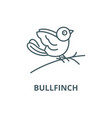 bullfinch line icon bullfinch outline vector image vector image