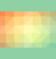colorful light polygonal which consist of vector image vector image