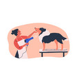 dog grooming service flat vector image