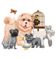 group cute animals cartoon character isolated vector image vector image