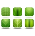 Leaves Square Icon vector image vector image