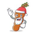 santa tamarind mascot cartoon style vector image vector image