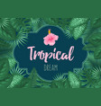 summer tropical background design vector image