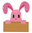 Rabbit easter with wood sign vector image
