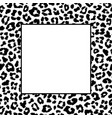 black and white leopard frame vector image