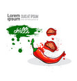 chili red hand drawn watercolor vegetable on white vector image vector image