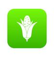 corncob icon digital green vector image