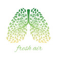 lhealthy lungs with foliage vector image