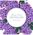 lilac flowers beautiful round card spring vector image vector image