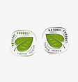 natural product logo leaf symbol or label vector image