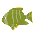 Tropical fish on white background vector image vector image