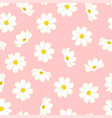 white cosmos flower on pink background vector image