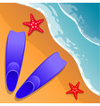 beach background flippers and starfish on the vector image vector image