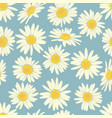 floral seamless pattern with camomile vector image