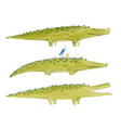 watercolor crocodile set vector image vector image