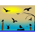 birds paradise vector image vector image