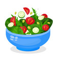 bowl vegetable salad fresh vegetarian food vector image vector image
