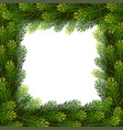 christmas borders from fir branches vector image vector image